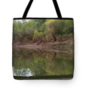 Bridge Frame Tote Bag