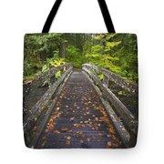 Bridge In A Park Tote Bag