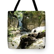 Bridge Over The River Braan, And The Black Falls In The Hermitage, At Dunkeld Tote Bag
