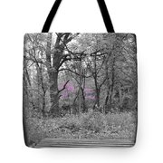 Bridge To Beauty Tote Bag by Dylan Punke
