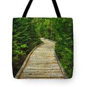 Bridge To Chimney Pond Tote Bag
