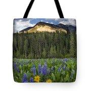 Bridger Teton National Forest Tote Bag