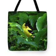 Bright American Goldfinch Tote Bag