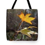 Bright And Sunlit Leaf, Arizona Tote Bag