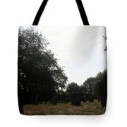 Bright And Sunny Day In The Cemetery Tote Bag