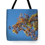 Bright Autumn Branch Tote Bag