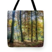 Bright Autumn Morning Tote Bag
