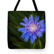 Bright Blue Aster Tote Bag