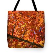 Bright Colorful Autumn Tree Leaves Art Prints Baslee Troutman Tote Bag