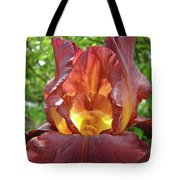 Bright Colorful Iris Flower Irises Baslee Troutman Tote Bag