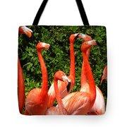 Bright Flamingos Tote Bag