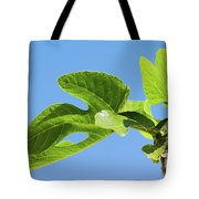 Bright Green Fig Leaf Against The Sky Tote Bag