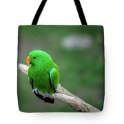 Bright Green Parrot Tote Bag