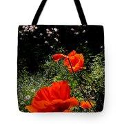 Bright Orange Tote Bag