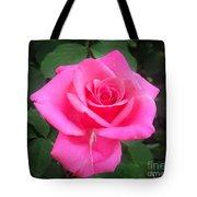 Bright-pink Rose 049 Tote Bag