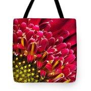 Bright Red Gerbera Daisy Tote Bag