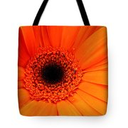 Bright Red Tote Bag