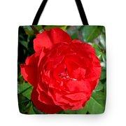 Bright Red Rose At Pilgrim Place In Claremont-california  Tote Bag