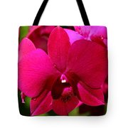 Bright Scarlet Red Orchid Tote Bag