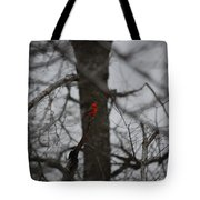 bRIGHT SPOT ON A CLOUDY DAY Tote Bag