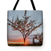 Bright Sun With Long Red Rays Shines Near The Trunk Tote Bag