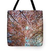 Bright Sun With Long White Rays Shines From The Crown Tote Bag