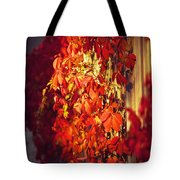 Bright Sunny Red Autumn Plants Tote Bag