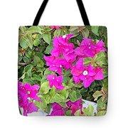 Bright Walkway Tote Bag