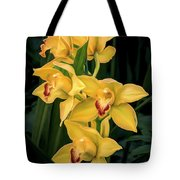 Bright Yellow Orchids Tote Bag