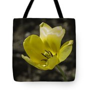 Bright Yellow Tulip Squared Tote Bag