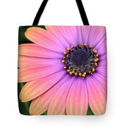 Briliant Colored Daisy Tote Bag