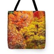 Brillant Fall Tote Bag