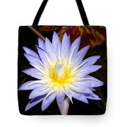 Brilliant Beauty Tote Bag
