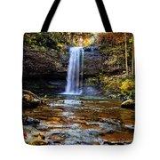 Brilliant Fall Waterfall At Cloudland Canyon Tote Bag