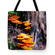 Brilliant Orange Tote Bag
