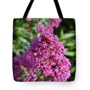 Brilliant Pink Blooming Phlox Flowers In A Garden Tote Bag