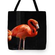 Brilliant Pink Flamingo Tote Bag