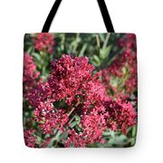 Brilliant Red Blooming Phlox Flowers In A Garden Tote Bag