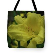 Brilliant Yellow Daylilies Flowering In A Garden Tote Bag