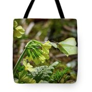 Brimstone On Cowslip Primrose Tote Bag
