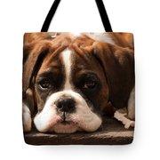 Brindle Boxer Pup Tote Bag