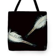 Brine Shrimp, Artemia Salina, Lm Tote Bag