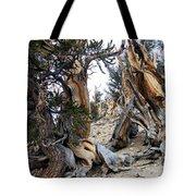 Bristlecone Forest, Ca November 2105 Tote Bag