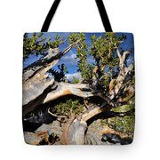 Bristlecone Great Basin Landscape Tote Bag