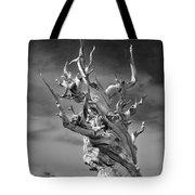 Bristlecone Pine - A Survival Expert Tote Bag