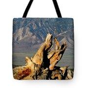 Bristlecone Pine Down Tote Bag