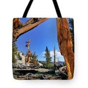 Bristlecone Pine Forest Tote Bag