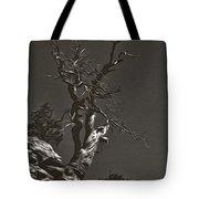 Bristlecone Pine In Black And White Tote Bag