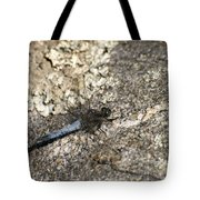 Broad Bodied Chaser Tote Bag