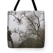 Broken Heart In  Fog Tote Bag